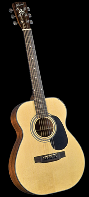 BD-116 Bristol Acoustic Dreadnaught Guitar Outfit