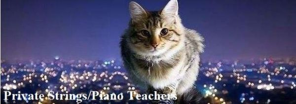 Private Strings and Piano Teachers