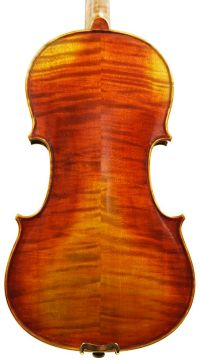 Essay on the violin