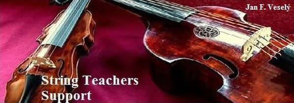 String Teachers Support