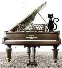 cat on a grand piano